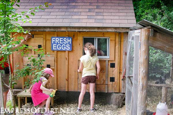 City Chicken Coop Ideas for Urban Hen-Keepers