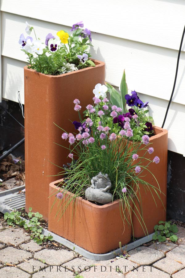 Pansies and chives fill these clay containers.