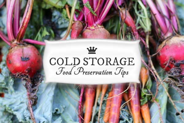 Once you learn the basics of cold storage for preserving food, you can save a lot money on food bills and have much less food waste.