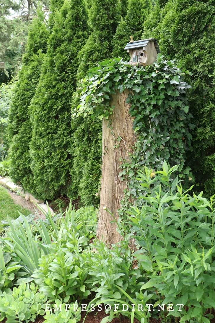 Birdhouse on a tree stump in a garden.