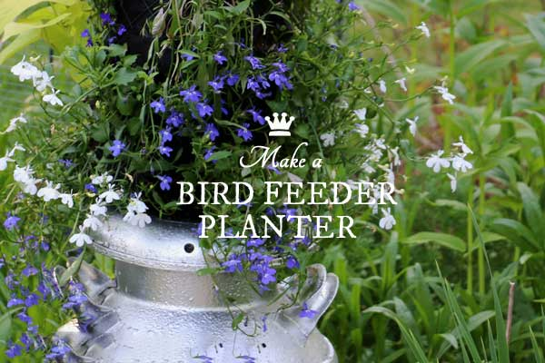 Turn a Bad Bird Feeder into a Fabulous Hanging Flower Planter
