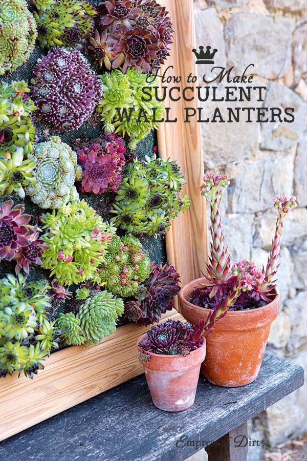 How to make framed succulent wall planters for your garden