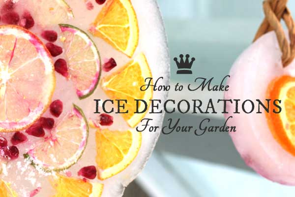 How to make ice decorations for the winter garden