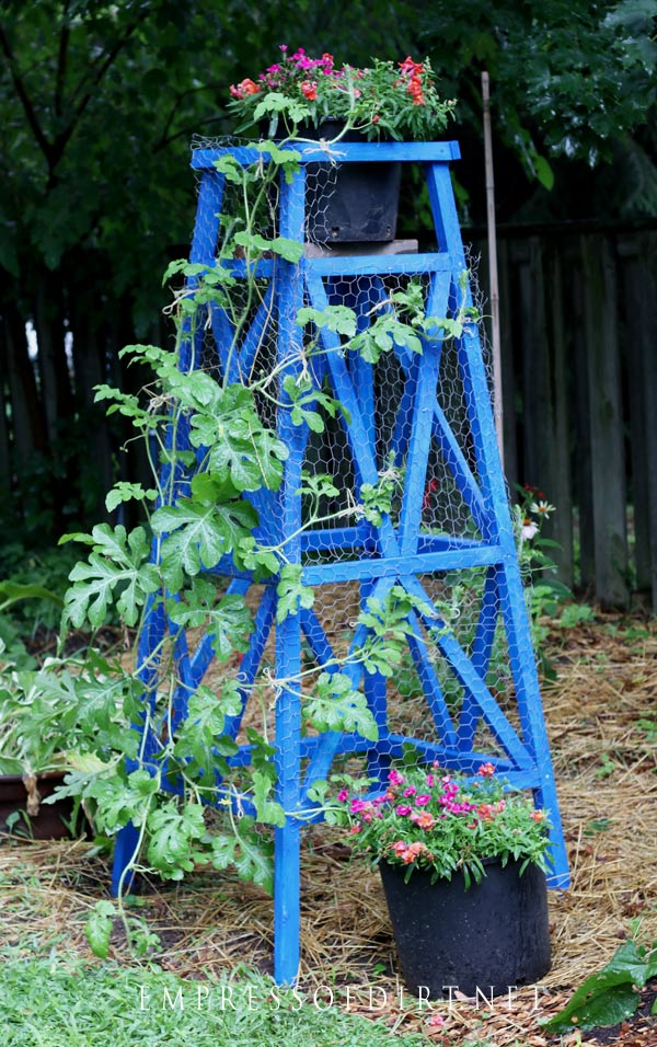 Make a DIY wood garden obelisk for your garden.