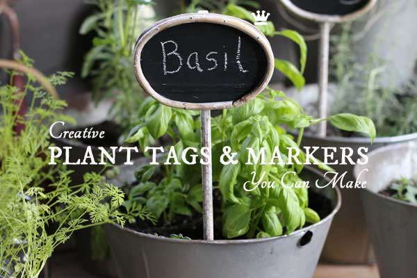 7 Creative DIY Plant Tag & Markers