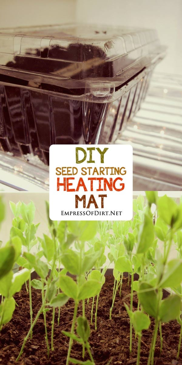 Many seeds germinate faster or better with some warmth. This simple hack uses holiday rope lights to mimic a seedling heat mat.