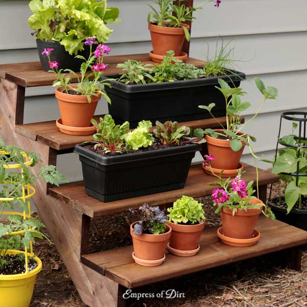 Staircase plant stand with plants.