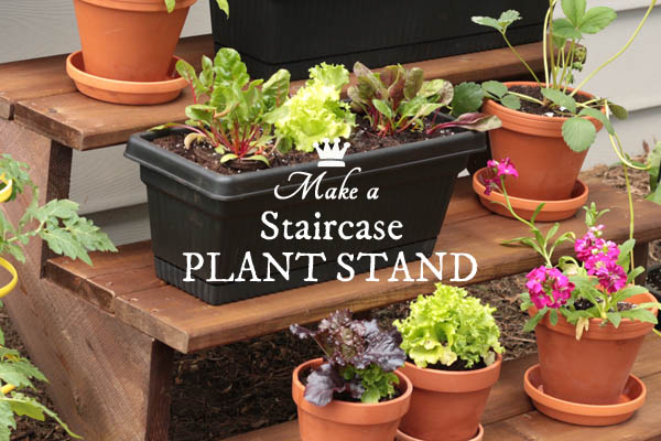 DIY Staircase Plant Stand
