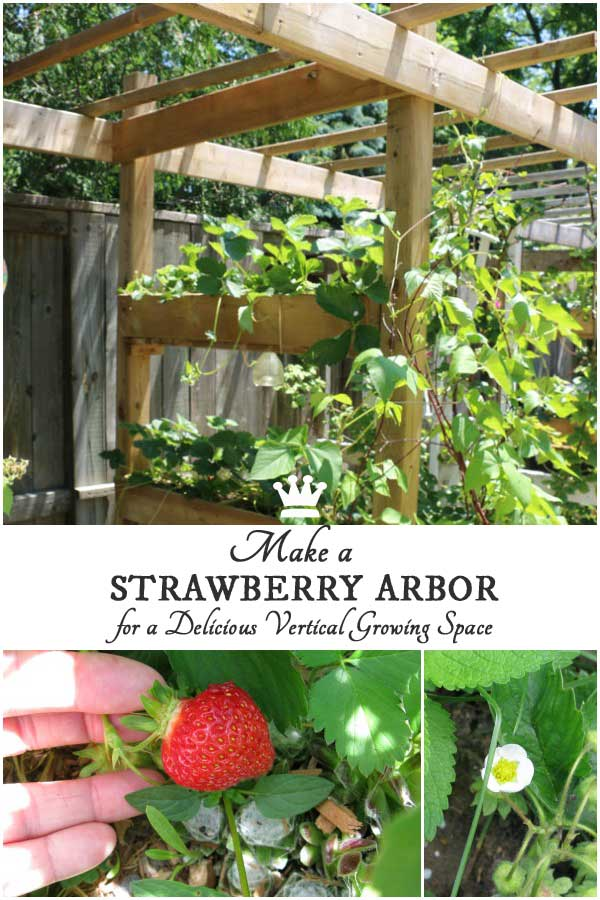 How to make a shade arbor and strawberry planter all in one