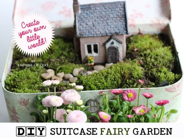 Create a fairy garden in a vintage suitcase. Sweet idea for the patio, garden, or indoor in your home.
