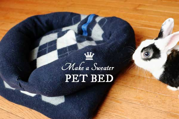 Turn an old sweater into a comfy pet bed! Great repurpose for a shrunken, felted garment.