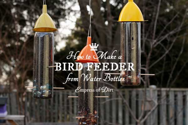 Plastic Water Bottle Bird Feeders