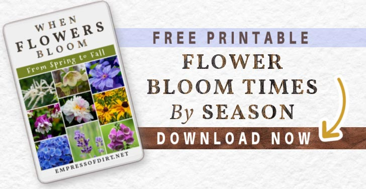 Button to click to download list of Flowers Bloom Times by Season.