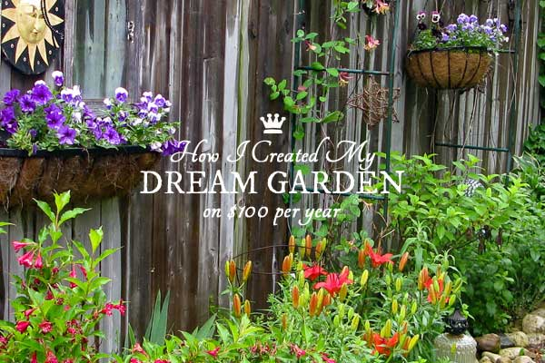 Create your dream garden on a low budget