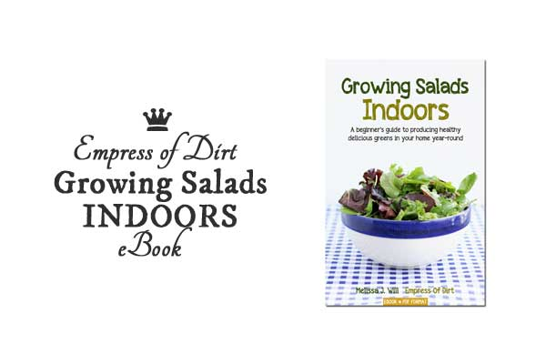 Growing Salads Indoors—Year-Round