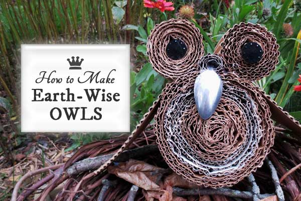 How to Make Earth-Wise Owls