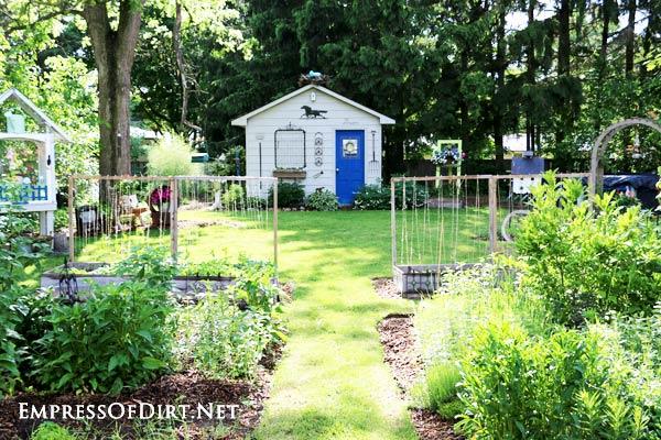 Early summer garden at Empress of Dirt world headquarters (backyard garden).