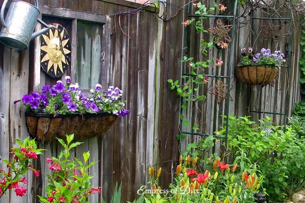 How to Create a Dream Garden on a Low Budget