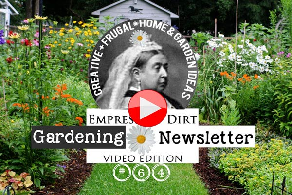 Empress of Dirt Newsletter | Video Edition
