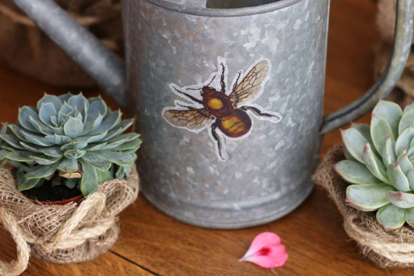 Galvanized watering can with bee art.
