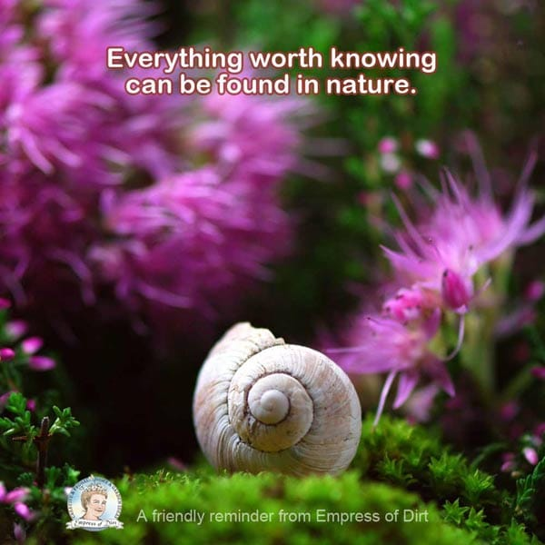 Everything worth knowing can be found in nature.
