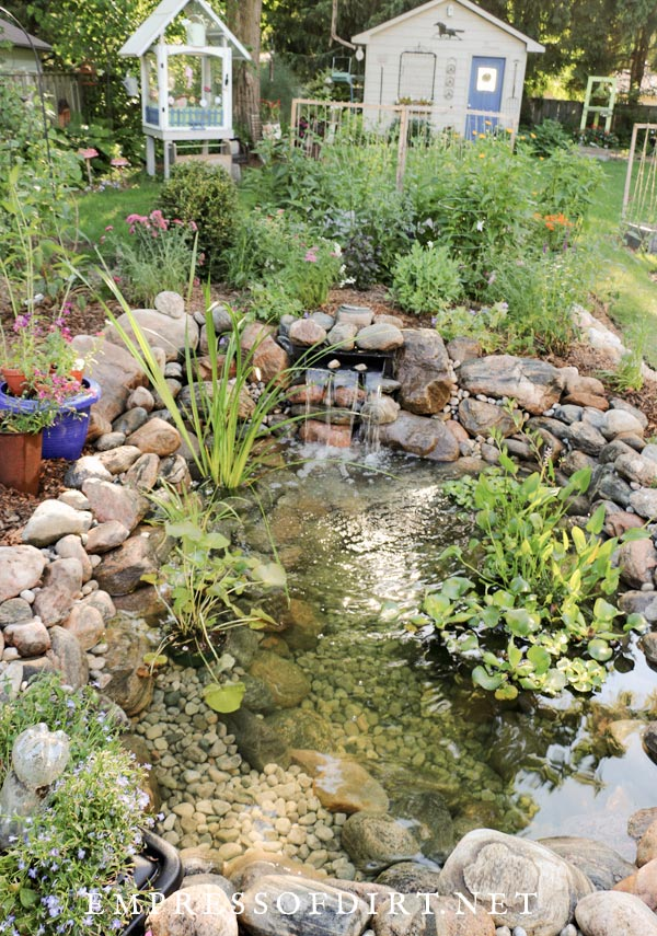 New garden pond with shed.