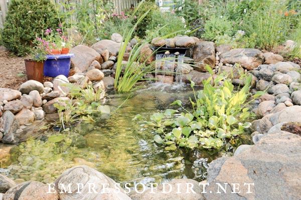 New garden pond.
