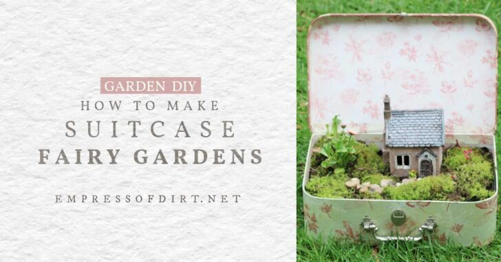Fairy garden with little cottage in a suitcase.