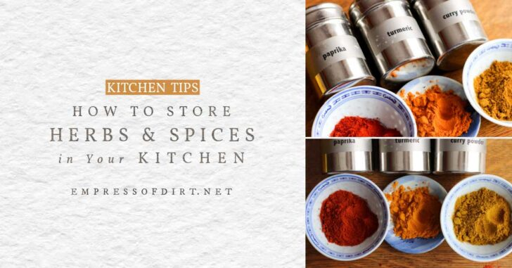 Herbs and spices in the kitchen.