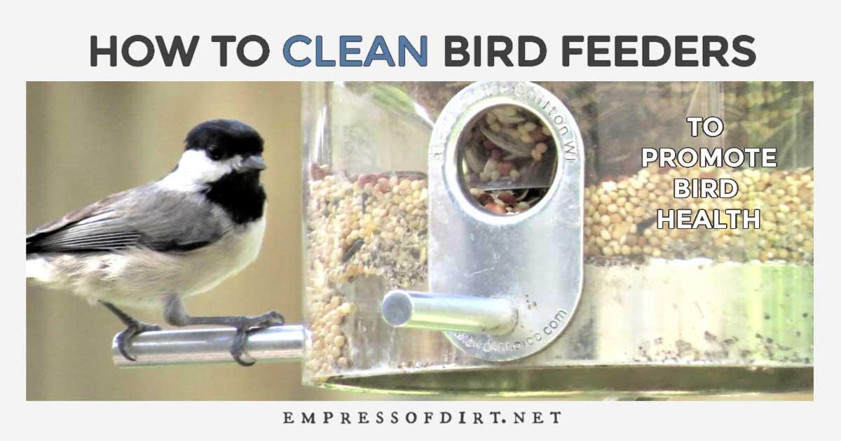 Large Bird Feeder Bird Table Type 24