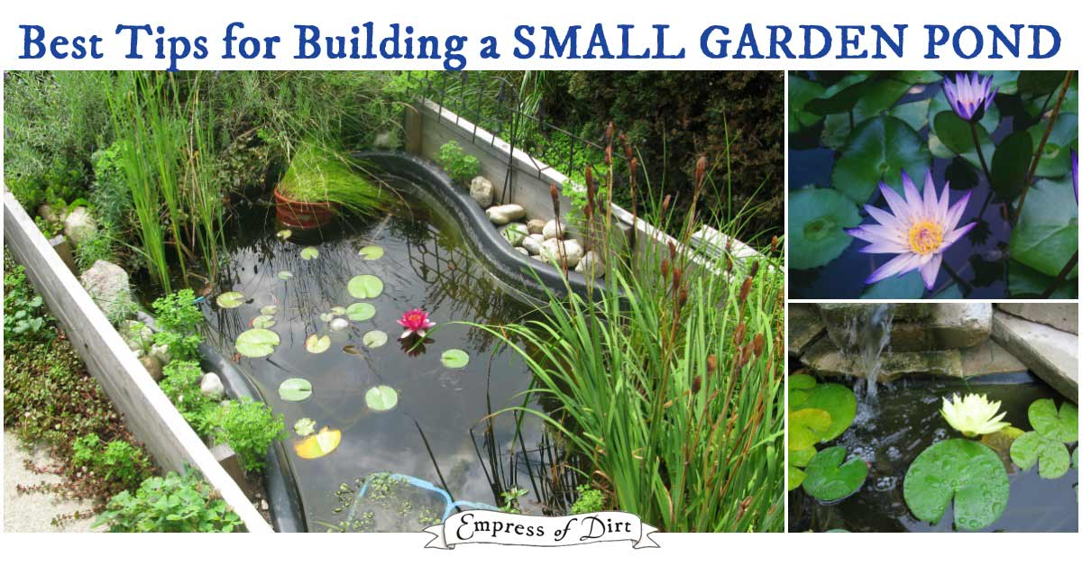FB How to start a new garden pond building a backyard pond? here's what you need to know first