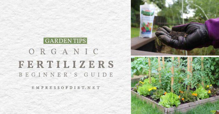 Organic fertilizer and a vegetable garden.
