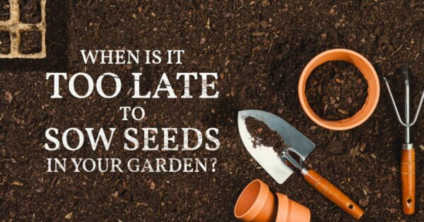 Garden soil, pots, and tools.