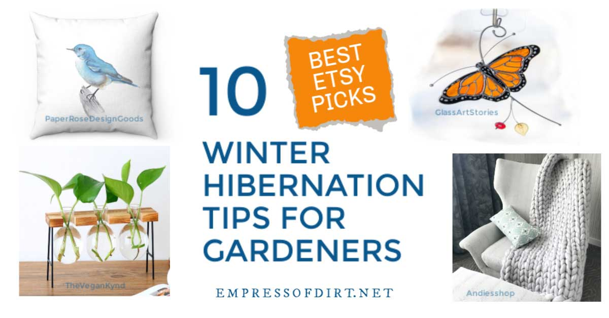 Creative indoor activity ideas for winter hibernation including rooting plant cuttings.