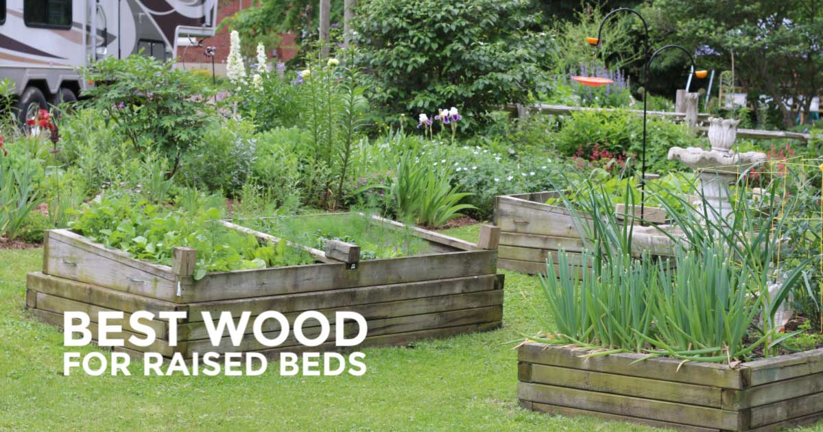 Best Wood for Raised Garden Beds | Empress of Dirt Raised Bed Garden Designs For A Sloped Yard on
