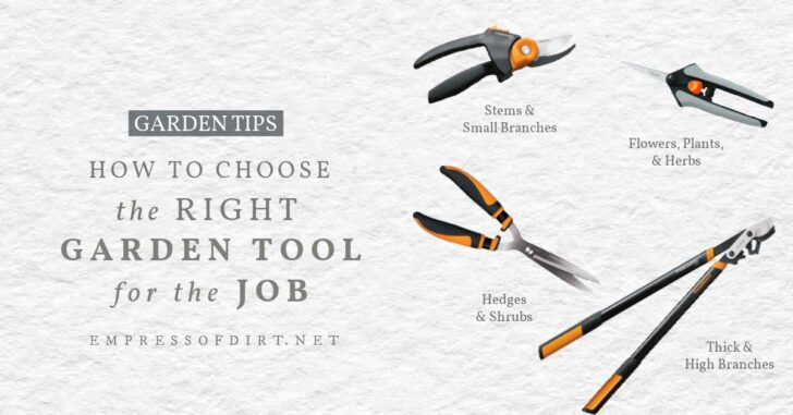 Garden tools including loppers and pruners.