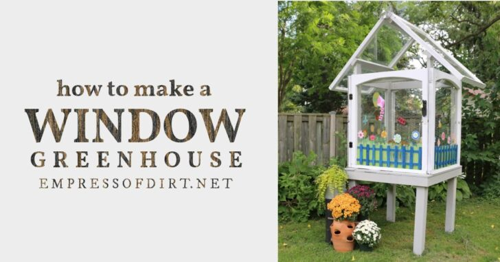 Mini greenhouse built from old windows.