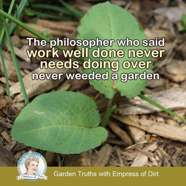 The philosopher who said 'work well done never needs doing over' never weeded a garden. Or cleaned a house, or ...