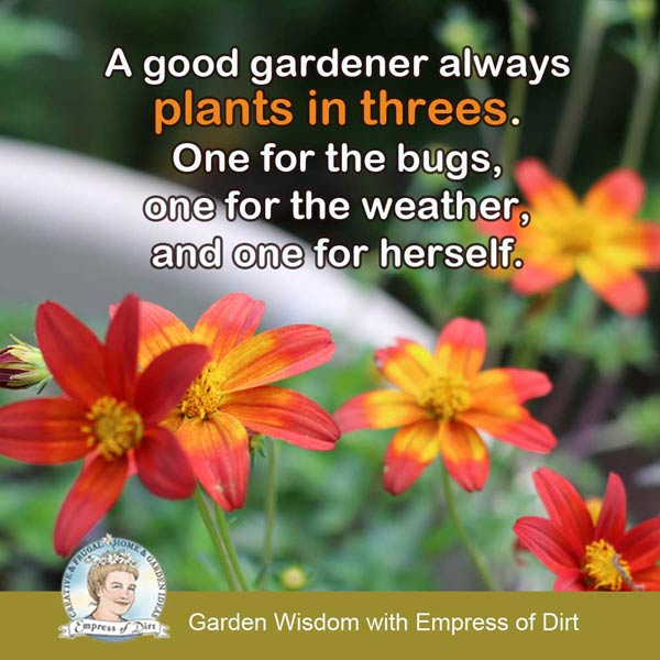 A good gardener always plants in threes. One for the bugs, one for the weather, and one for herself.