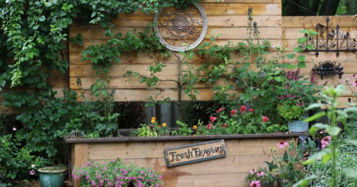 DIY raised garden bed with built-in privacy wall.