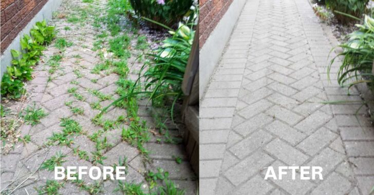 Before and after pulling weeds from brick path.