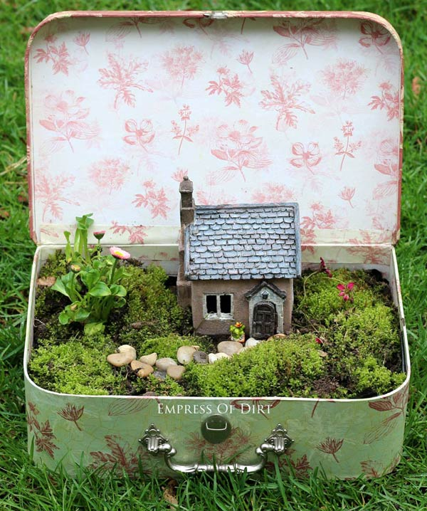 Miniature garden in an open vintage suitcase.