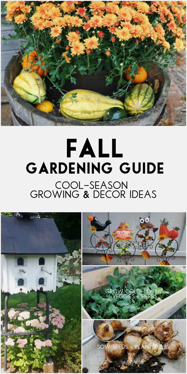 As the weather cools for the fall and winter, it's time to both celebrate the autumn harvest, grow fall crops, and get some seeds and bulbs planted for spring.