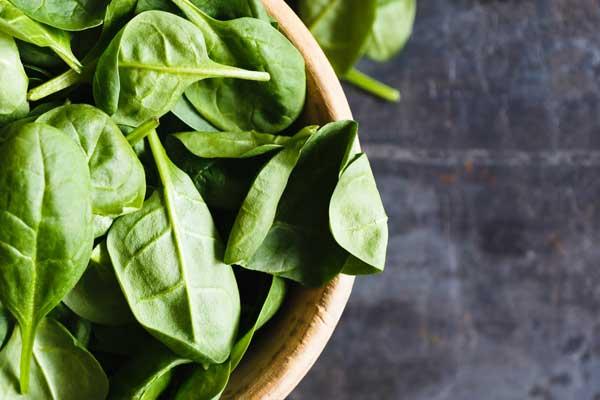 Veggies & Herbs to Grow in the Fall   Free Printable