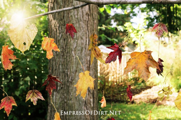Preserve the beauty of autumn with a beautiful falling leaves art display.