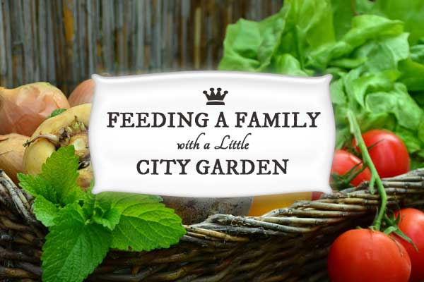How to feed a family with a little city garden.