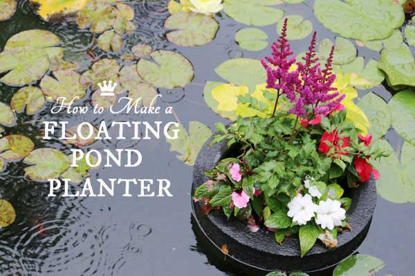 DIY floating ond planter
