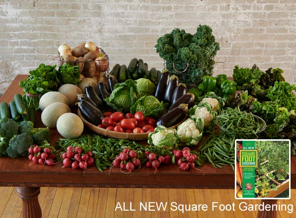 What you can grow in a small space with Square Foot Gardening. Photo by Paul Markert.