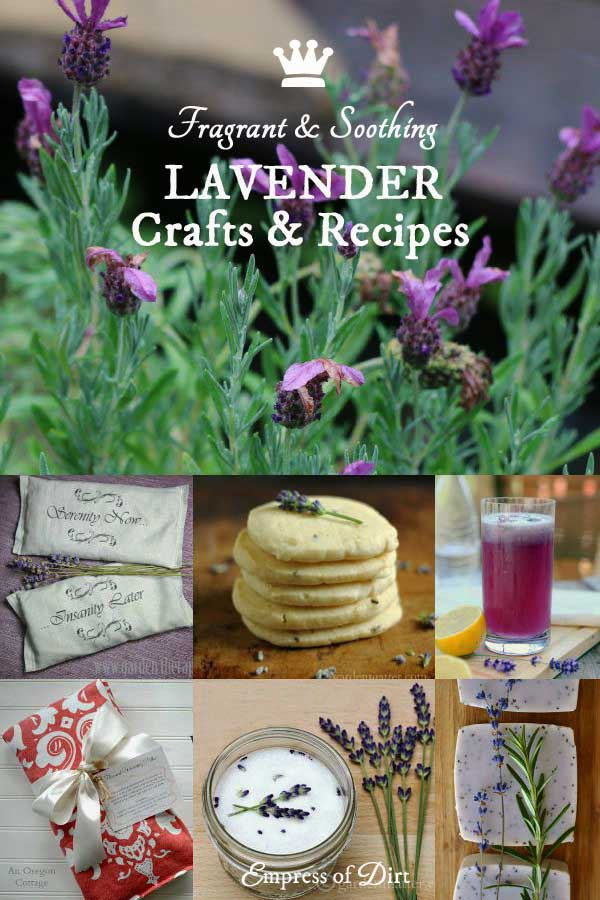 Lavender Crafts and Recipes | Fragrant, Soothing, Delicious