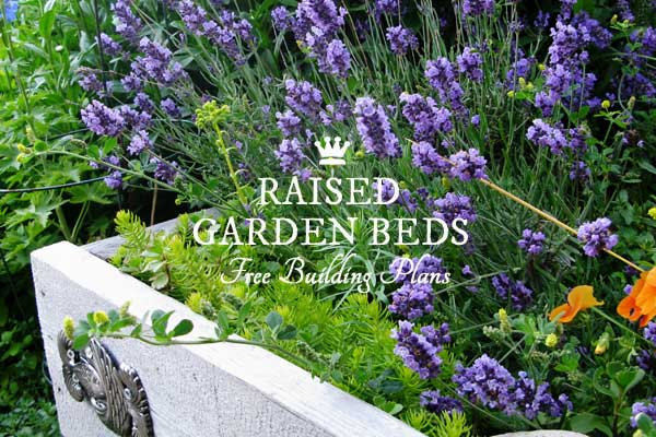 Build a small garden pond in a raised bed